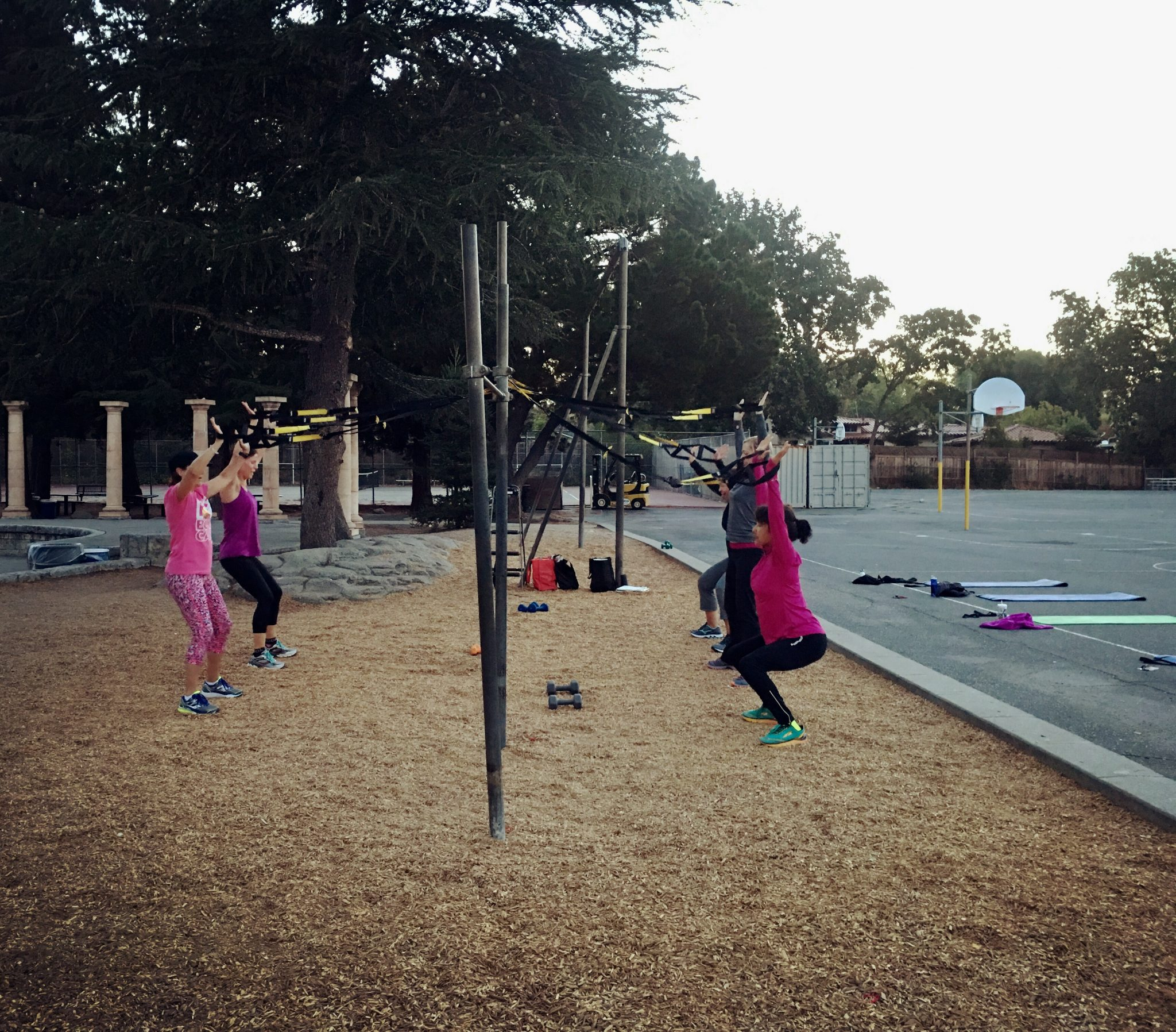 Friday Fitness – Client Portal + DIY Workout!