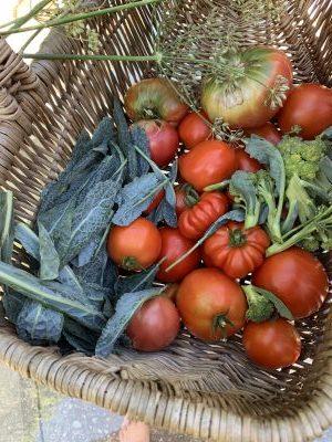 Grow Food Friday